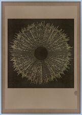 SCULTURA in metallo Texture stampa onda sonora oro Bauhaus Fornasetti Op Art Deco