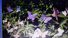 4er-Set Deko Clip Schmetterling uni rose weiss hellblau flieder Deko Geschenk
