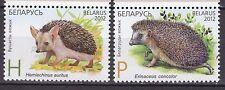 BELARUS 2012 **MNH SC# ( ) The Animals - Hedgehogs