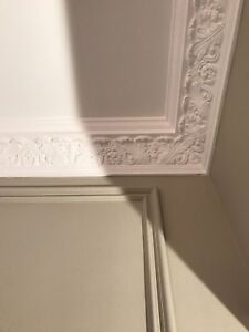 Plaster Coving. Large Ancathus C23. Price Per 3m Length. Delivery Available.