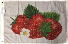 2 x 3 ft. Nylon Strawberry Flag, Printed with Heading and Grommets