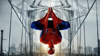 Spiderman 3D Kids Boys Wall Stickers Art Mural Decal Removable Decor Gift DIY