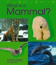 What Is a Mammal (Animal Kingdom)