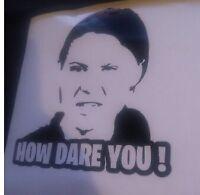 Greta thunberg How Dare you ,funny, meme ,Decal,  car,sticker,window ,big 35cm