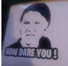 Greta thunberg How Dare you ,funny, meme ,Decal, drift , jdm, car,sticker,window