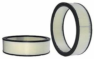 WIX 42043 Air Filter