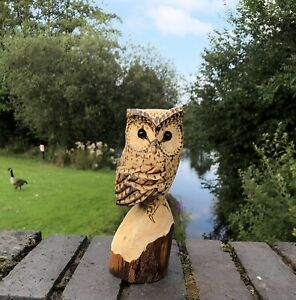 Bespoke Chainsaw Owl Carvings In Wood 131301HHH