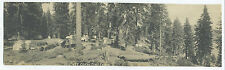 1920s Panoramic Photo of Cedar Crest Camp in California with Tents
