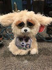 Lunatic Lexi Golden Doodle Growling fiesty Pet Dog