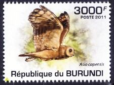 Marsh Owl, Birds of Prey, Burundi 2011 MNH