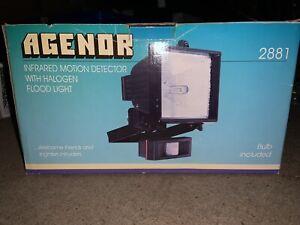 Agenor 500w Halogen Floodlight With PIR