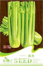 Original Package 40 Dry Celery Seed Apium Graveolens Parsley Vegetable Seed C097