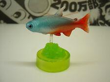 Tropical fish Mini Figure Neon tetra Paracheirodon innesi Gashapon Japan