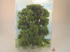 Esche - 1 Stck.  - Bäume  - 15 cm - Heki  1906  #E