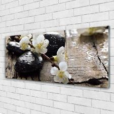 Wandbilder Glasbilder Druck auf Glas 125x50 Blumen Steine Kunst