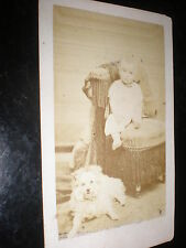 Cdv old photograph baby and dog by Duburguet Saint Maixent France c1860s