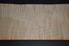 Flame Maple Raw Wood Veneer Sheets 5 x 53 inches 1/42nd thick            4730-23