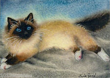 Birman Cat ACEO art print mounted from original painting by Suzanne Le Good
