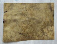 Laurel Burl Wood Veneer 6 Sheets 465 X 34 Cm 183 X 133 055mm 145