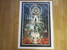 Peter Pracownik Rare 1990's Poster - Songs of Amiergin. Fantasy Art