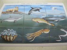 Tanzania fish marine life underwater  I201804