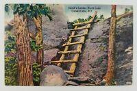 Postcard Linen Jacobs Ladder North Lake Catskill Mountains New York