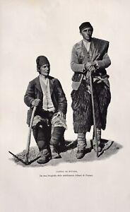 Stampa antica - Caprai di Bivona - 1902 da una foto Alinari