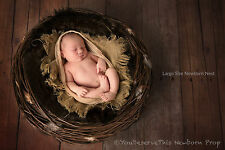 Newborn Photography Prop - Nest Photo Prop - Quality English Willow - size LARGE