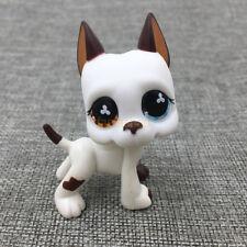 Littlest Pet Shop #577 Brown & White GREAT DANE DOG Flower Eyes Puppy Toys RARE