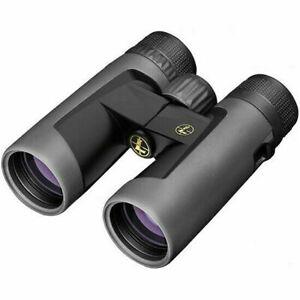 Leupold BX-2 Alpine Binocular, 10x42mm, Roof Prism, Shadow Gray, 176971