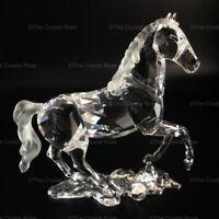 RARE Retired Swarovski Crystal Stallion / Horse 898508 Mint Boxed