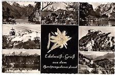 AK, Berchtesgadener Land, sieben Abb., Edelweis (echt), um 1958