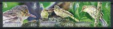 Pitcairn Islands 2019 MNH Reed Warbler 3v Strip Warblers Birds Stamps
