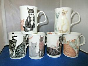 "CATS GALORE  set ""SIX""  FINE BONE CHINA mugs, Made In England Roy Kirkham 10oz"