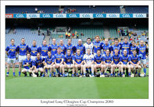 Longford Lory Meagher Cup Champions 2010: GAA Print