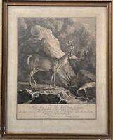Kupferstich Johann Elias Ridinger Jagd Hirsch Salzburg 1741 48,5 x 38,5 cm