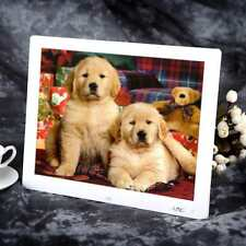 """15""""inch HD LCD Digital Photo Frame Picture MP4 Movie Player Clock Remote Control"""