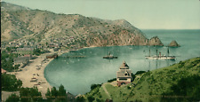 USA, Santa Catalina Island, Avalon. vintage photochromie,  photochromie, vinta