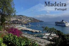 Madeira Portugal Photo Fridge Magnet (2x3) Collectibles Art Print