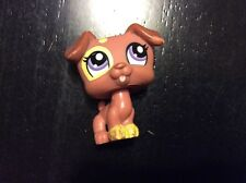 Littlest Pet Shop Brown Jack Russell Terrier Purple Eyes #1475 Puppy Dog Yellow