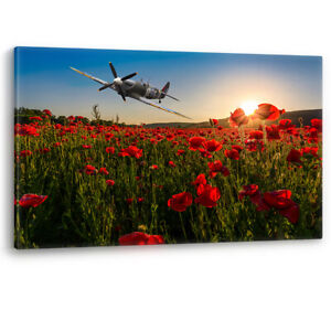 Spitfire over Poppy Field Sunset Poppies Remembrance RAF Canvas Picture Print