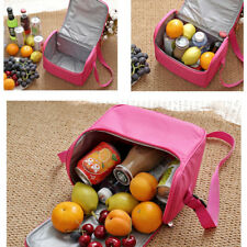 Woman Lady Waterproof Insulated Cooler Lunch Tote Bag Baby Storage Container