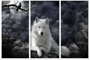Wolf Moon At Night Black & White Wall Art 3 x Split Panel Canvas Pictures 10x20""