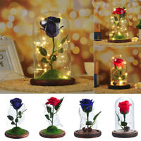 Creative Gift Forever Rose Flower Festive Preserved Immortal Fresh Rose in Glass