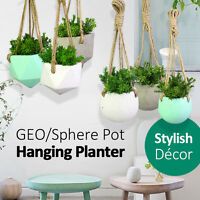17x13CM GEO/Sphere Hanging Concrete Pot Planter Grey White Mint Garden Decor