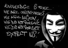 Anonymous  Hacker Guy Fawkes Mask A3 260gsm Poster Print