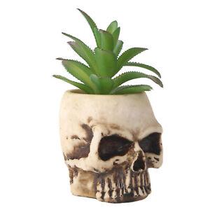 Artificial Skull Head Flower Pots Succulent Planter Pot Plant Container Garden