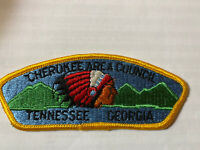 MINT CSP Tennessee Valley Council S-1