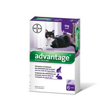 Advantage Anti-puces pour Chat (>4 kg) - 6 pipettes
