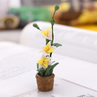 Doll House Miniature Fairy Garden Home Room Decor White Orchid Flower in Pot